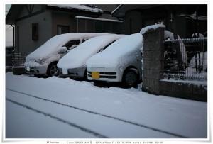 2011-01-17_雪景色