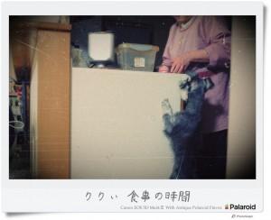 riri_shokuji_photoscape_pola